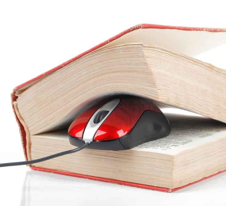Gestión terminológica en traducción