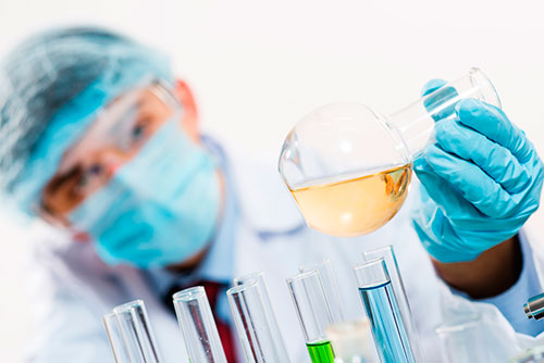 Servicios de traducción profesional científica